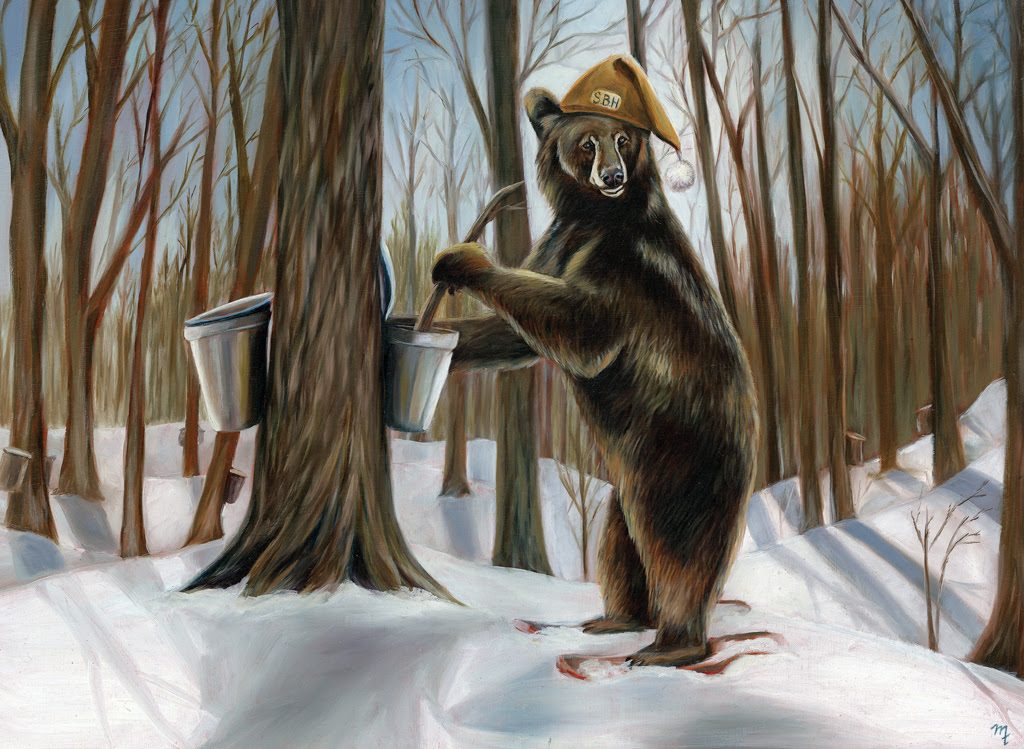 Bear doing Maple Syrup