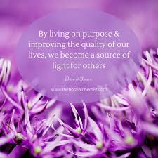 By living on purpose & improving the quality of our lives, we become a source of light for others