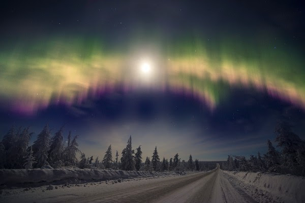 Northern Lights over the snowy landscape